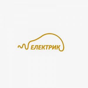 Логотип электрика