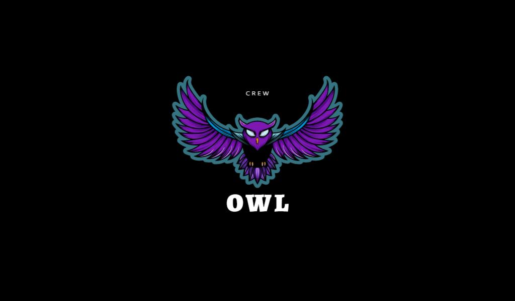 Логотип для команды КС ГО сова