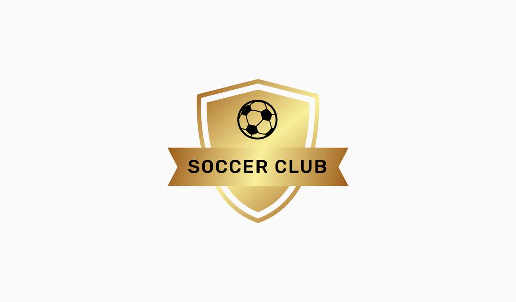 Логотип спортивной команды: футбольный мяч и щит